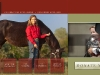 Multimedia Presentation American Quarter Horse Association Foundation